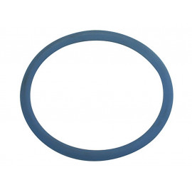 P&W Seal Ring small 55/50mm